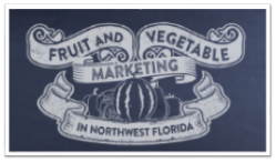 Where to Start with Marketing Fresh Produce?