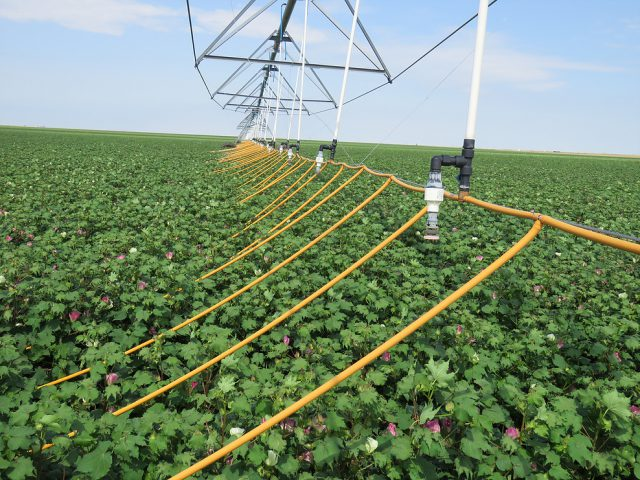 Friday Feature:  Mobile Drip Irrigation from Center Pivots