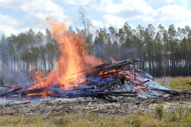 Gadsden County Certified Pile Burner Course – December 10
