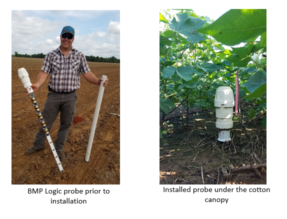 Moisture Monitoring, Cover Crops, and Best Management Practices for Crop Farmers