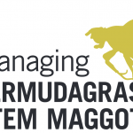 New Bermudagrass Stem Maggot Management Guide from UGA