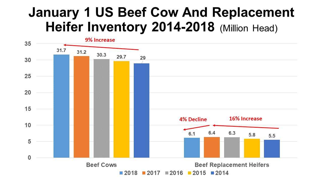 US Cattle Herd Expansion Slows but Continues through 2017