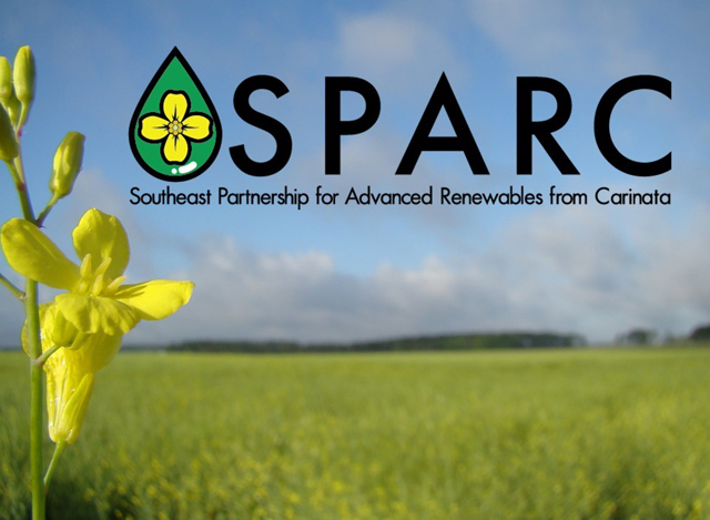 Carinata SPARCs Interest as a Winter Crop for the Southeast U.S.