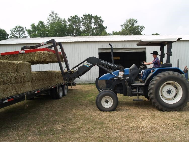 Enhanced Florida Hay Supplier Website Offers Free Advertising for Hay Producers