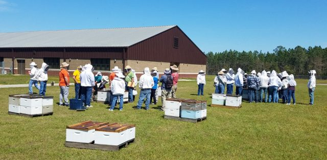 Highlights from the UF/IFAS Panhandle Bee College