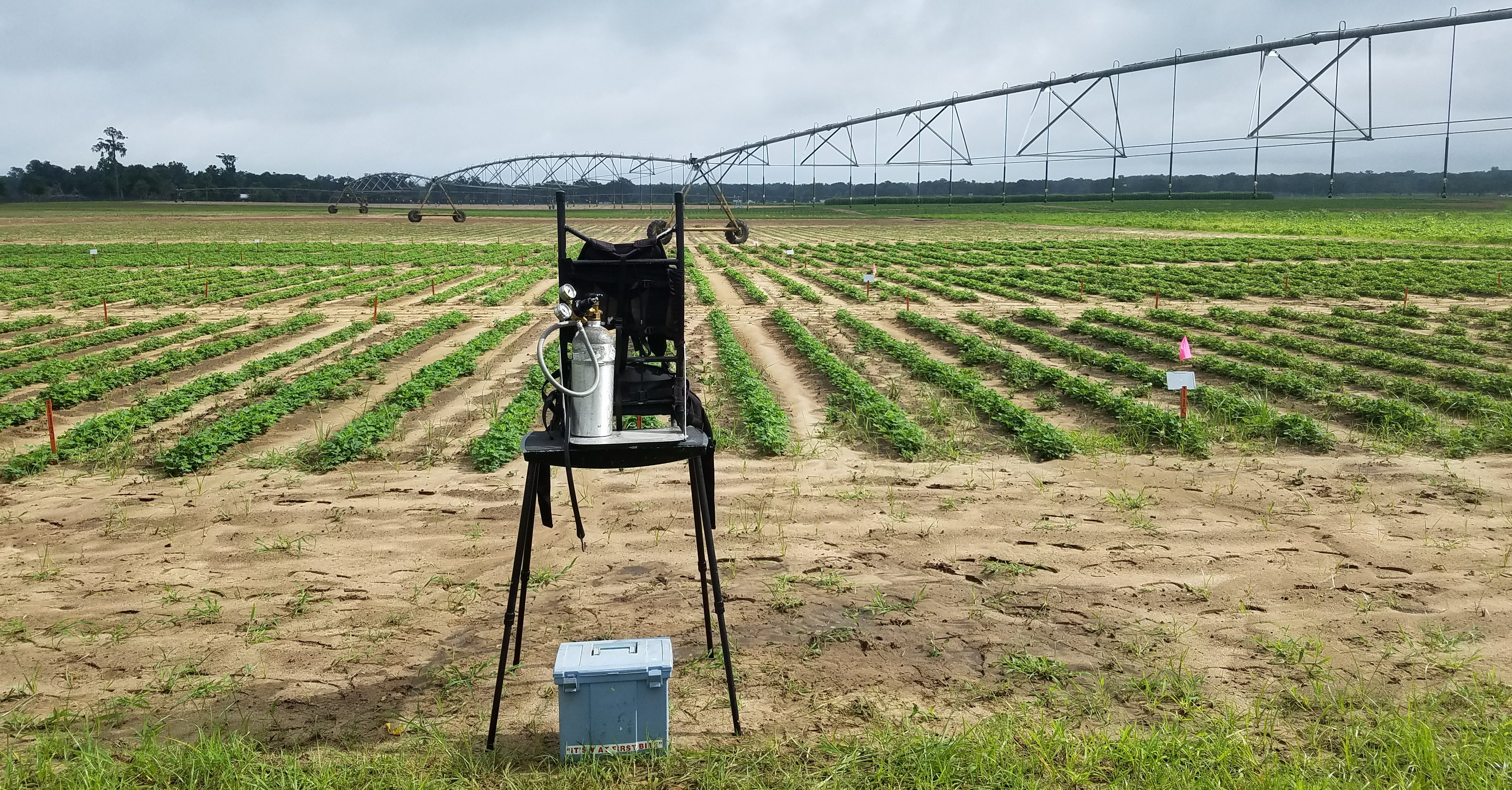 Peanut Fungicide Spray Strategies: The Values of Alternating or Mixing Modes of Action