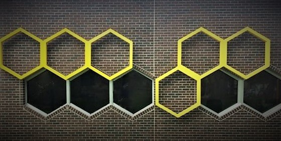Friday Feature:  UF's New Honey Bee Research Lab