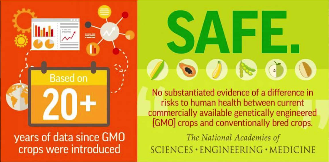 Friday Feature:  Defining GMOs in Food