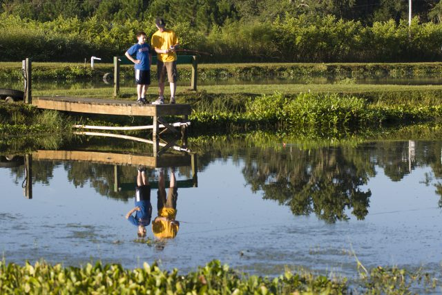A father and his son fishing in a pond. Fishing, outdoor recreation. June 2010 IFAS Extension Calendar Image. UF/IFAS Photo by Tyler Jones.