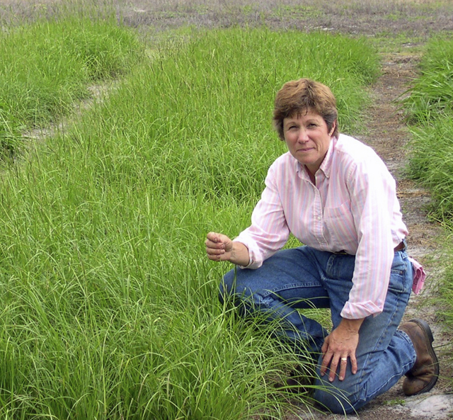 Dr. Ann Blount Named 2018 Woman of the Year in Agriculture