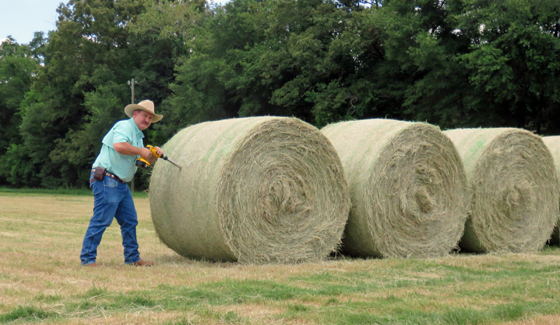 Precision Feeding After a Challenging Hay Season
