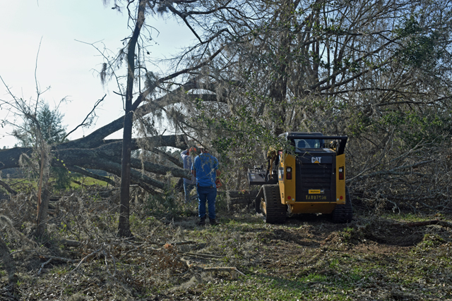 Federal Programs Available to Help Farmers and Ranchers Recover from Hurricane Michael
