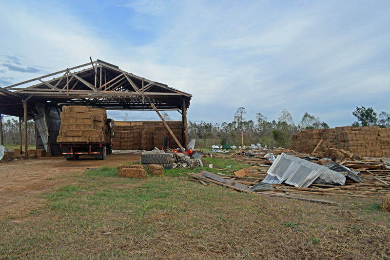 Jackson County hay barn destroyed by Hurricane Michael