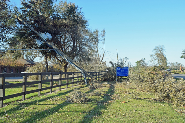 Hurricane Damage @ NFREC Marianna