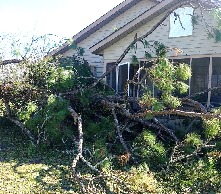 Assessing Structural Damage After the Storm