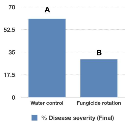 Disease Severity chart
