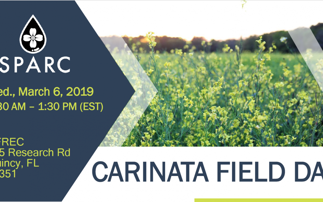 Carinata Field Day – March 6