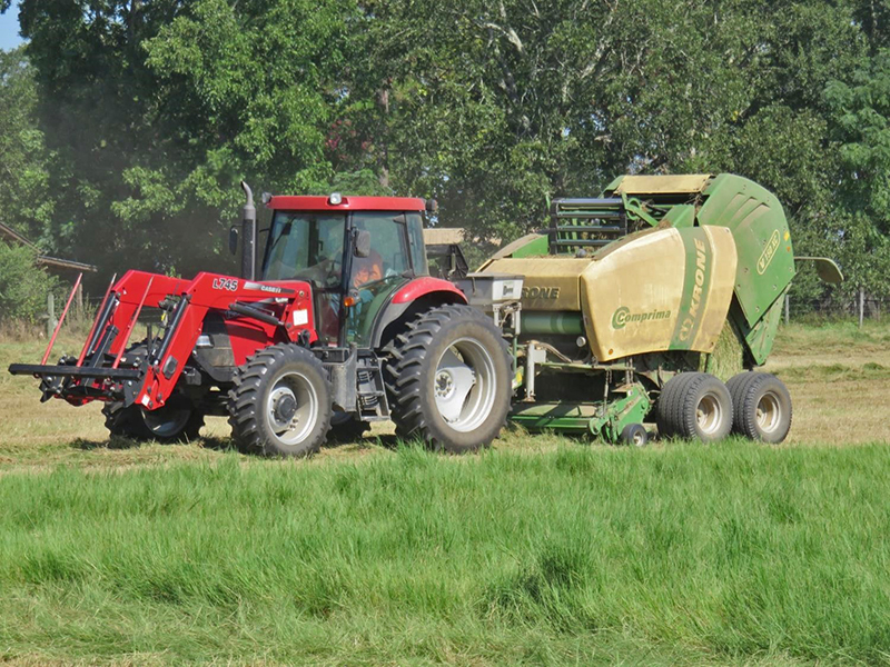 Strategies for an Adequate Forage Supply this Winter