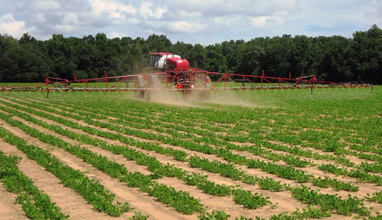 Paraquat Certified Applicator Training Required to Prevent Poisonings