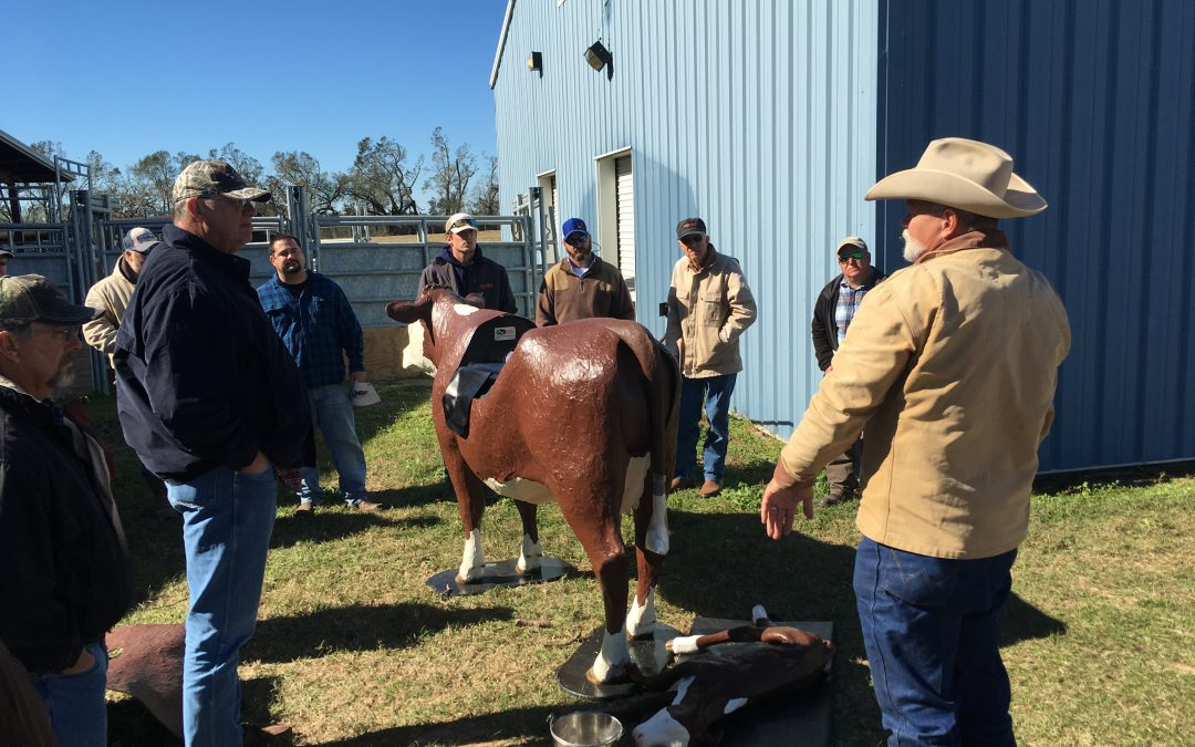 Holmes County Spring Cattlemen's Field Day and Social – March 30