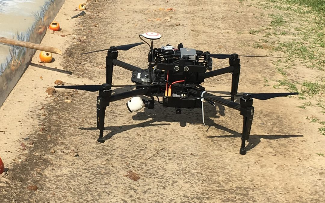 Do I Need a License to Fly My Drone?