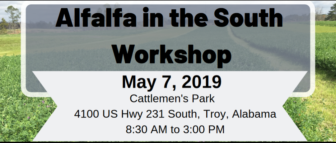 Alfalfa in the South Workshop – May 7