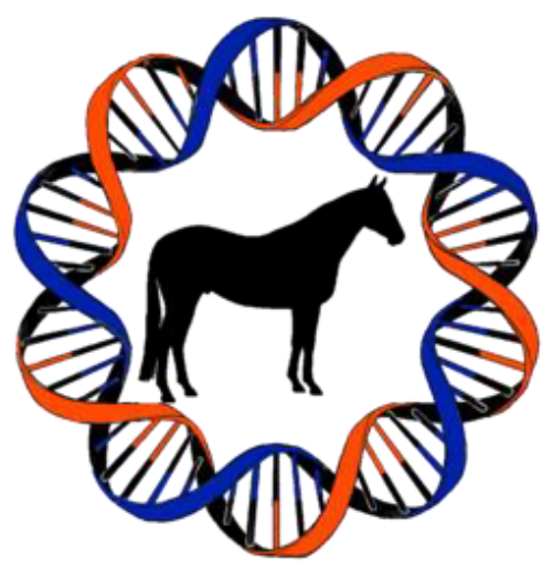 Opinion of Florida Horse Owners Requested through Equine Genetic Testing Survey