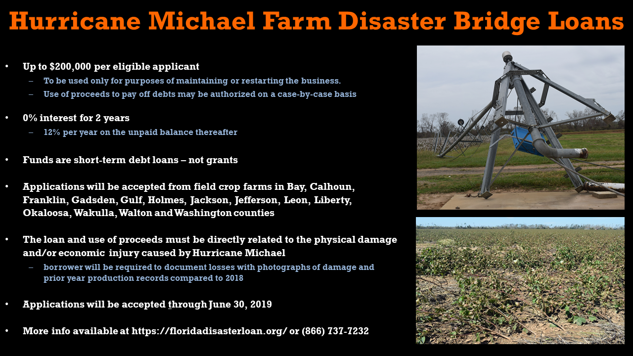 Disaster Farm Bridge Loan Program