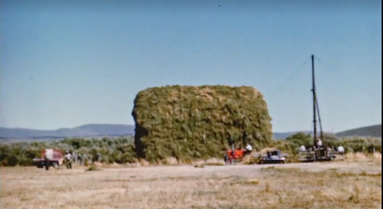 Monday Feature:  1950s Hay Stacking