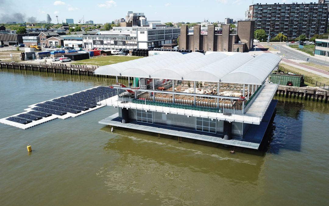 Friday Feature: Floating Dairy in Rotterdam
