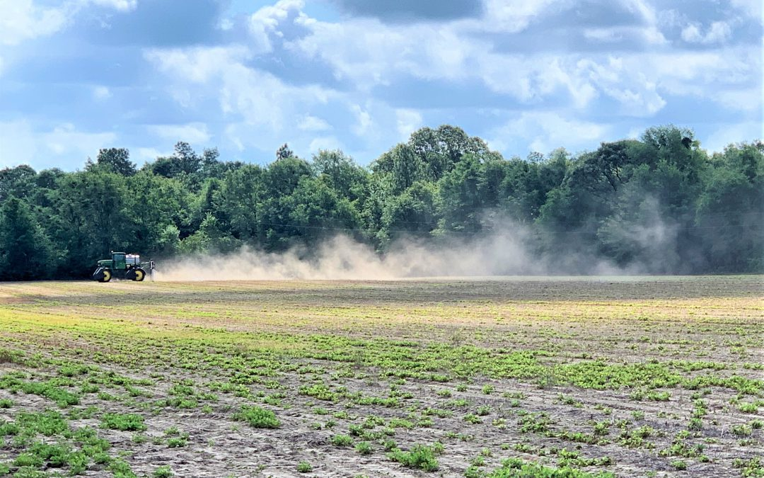 How Hot and Dry Conditions Affect Herbicide Performance