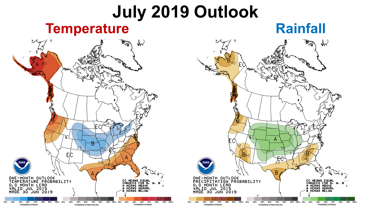 July 2019 Outlook