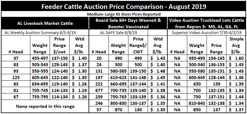 August 2019 Feeder Cattle Price Comparison Chart