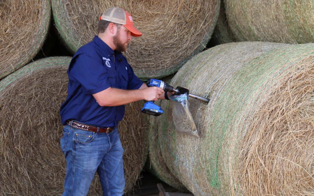 In the Field Episode 1 – Hay Sampling for Forage Quality
