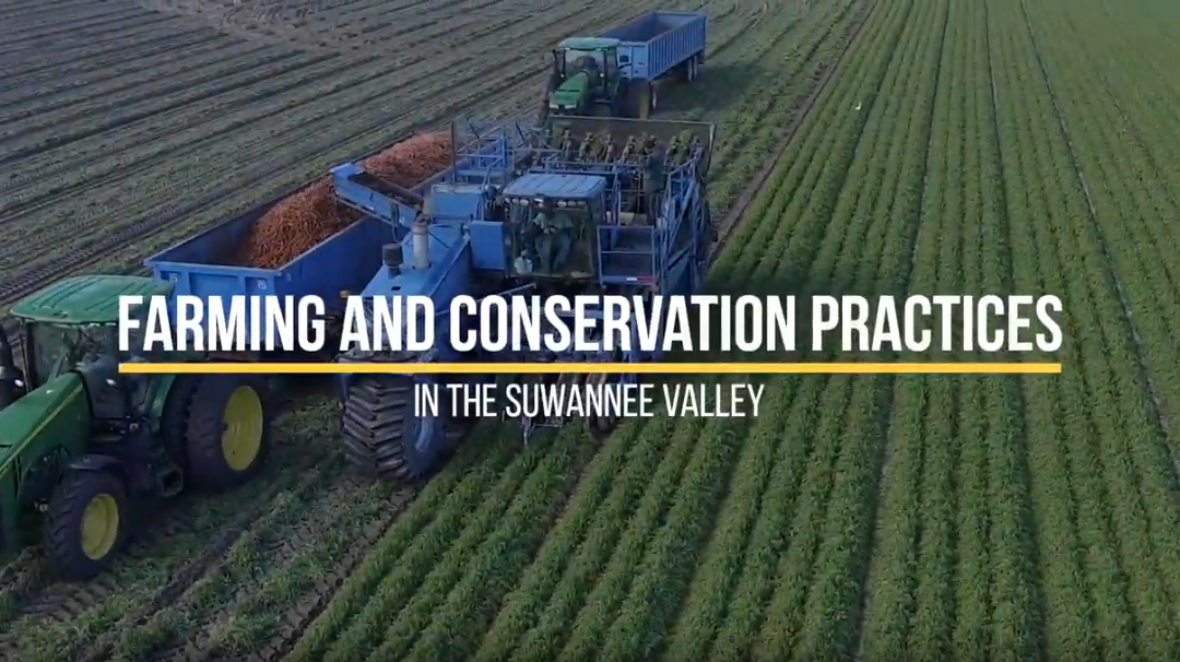 Friday Feature:  Farming and Conservation Practices in the Suwannee Valley