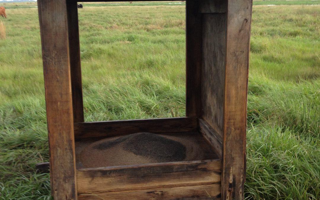 Dispelling Cattle Mineral Supplementation Myths