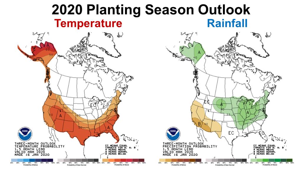 2020 Planting Season Outlook