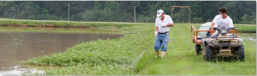 Aquatic Weed Control Webinar – March 20