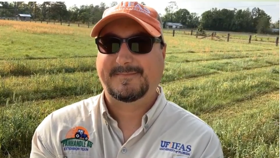 Gulf County Cool-Season Forage Virtual Field Day