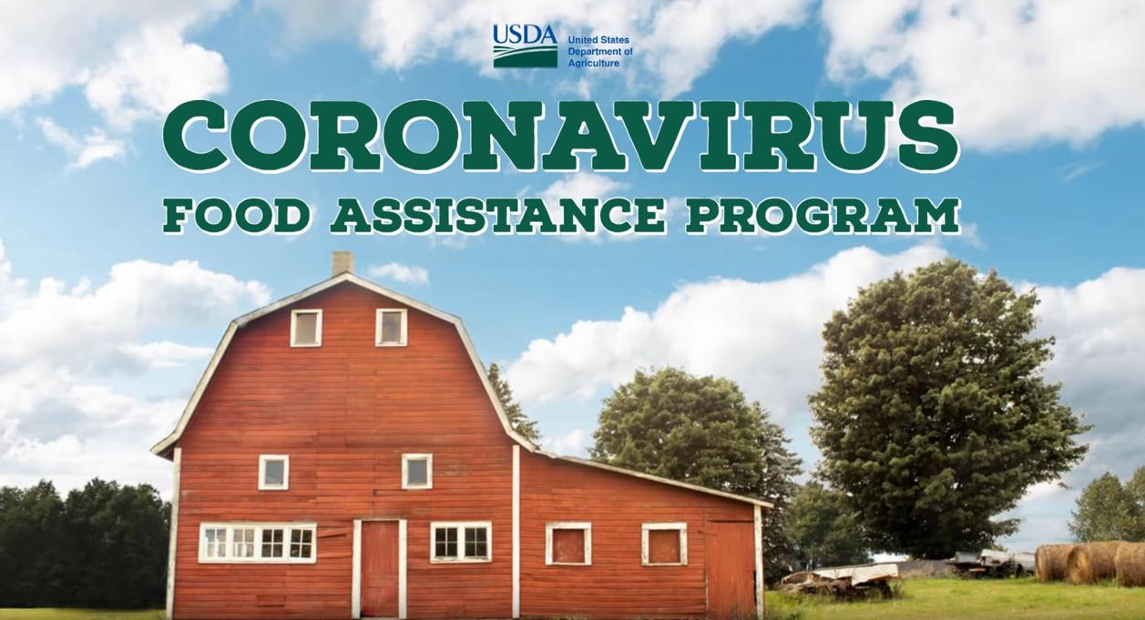 USDA COVID Food Assitance Program