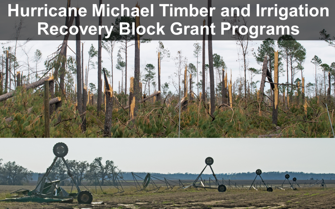 Registration Open for Hurricane Michael Timber and Irrigation Recovery Block Grant Programs