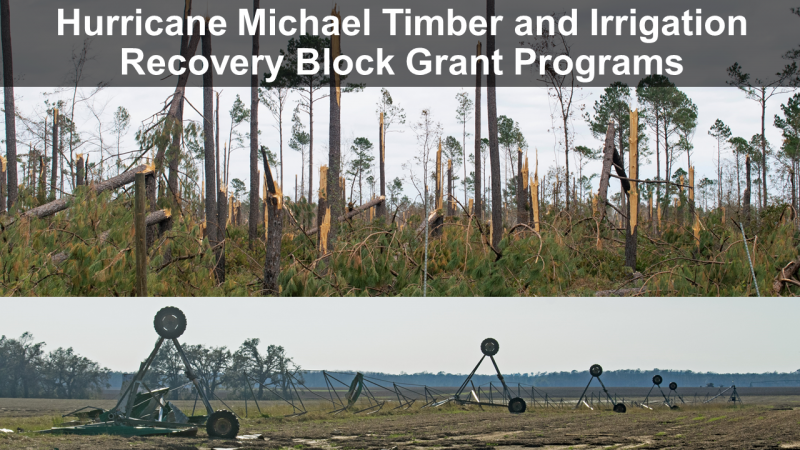Hurricane Michael Timber and Irrigation Recovery Block Grant