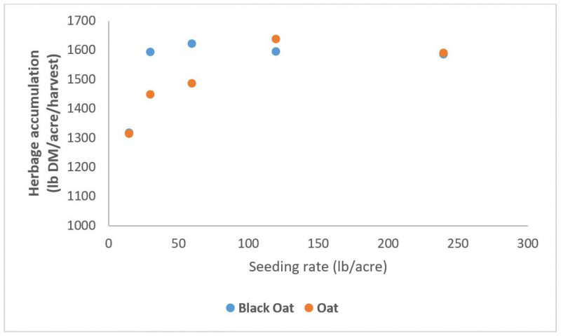 Fig 5 Oat Yield by seeding rate chart