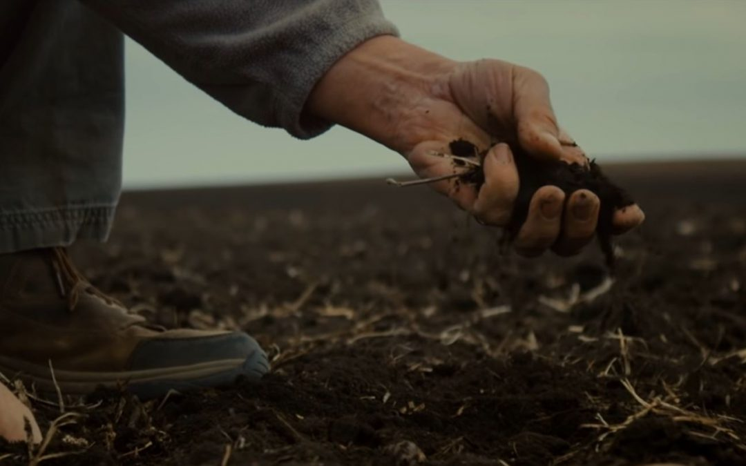 Friday Feature:  The Farmer Must Feed Us All