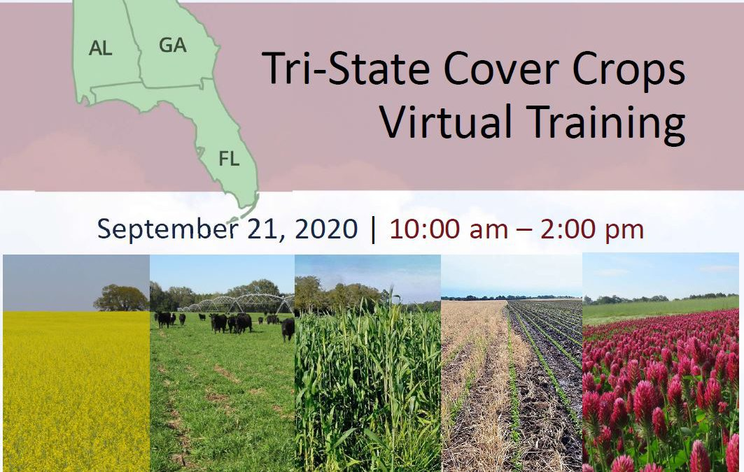 Tri-State Cover Crops Virtual Training – September 21