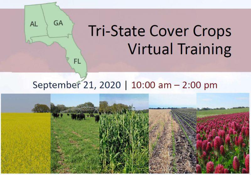Tri-State Cover Crops Training image