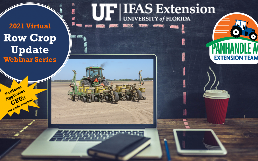 Register for the 2021 Panhandle Row Crops Update Series – CEUs Available for Participants
