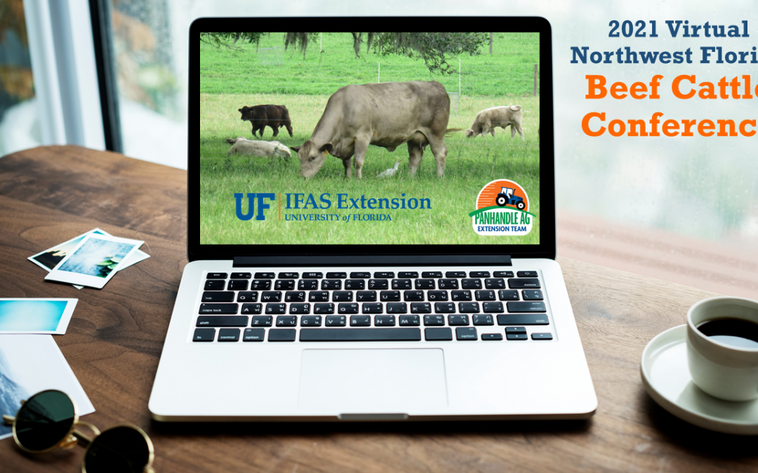 2021 Virtual Northwest Florida Beef Cattle Conference Webinar – February 10