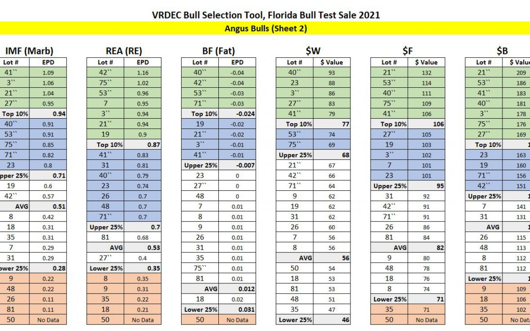 Florida Bull Test Sale – Performance Data Analysis
