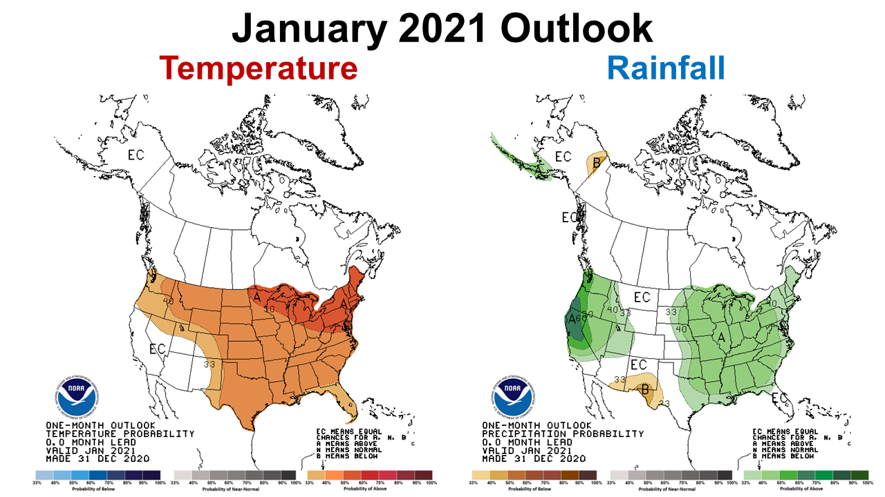 January 2021 CPC Outlook